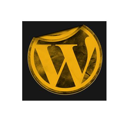 wordpress development schoonhoven 2