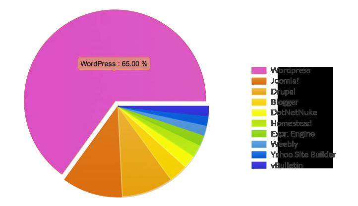 wordpress domination webdesign schoonhoven website laten maken