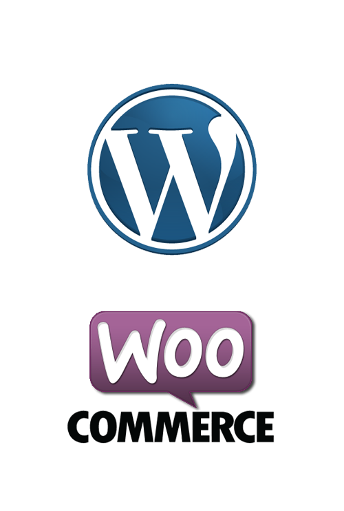 wordpress webdesign schoonhoven website laten maken